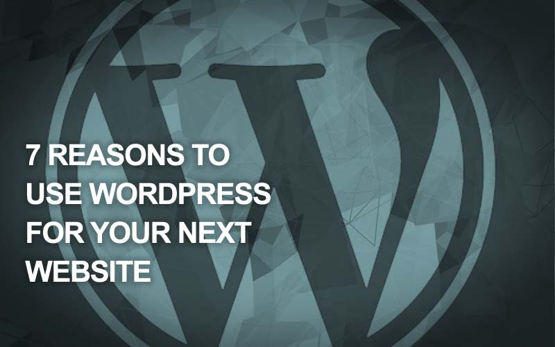7 Reasons to Use Wordpress for Your Next Website